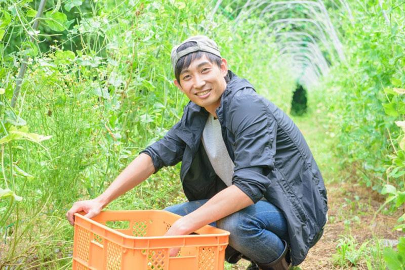 えん堆肥を使用する農家さん